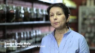 Sala de exposições do INCT - Herbário Virtual