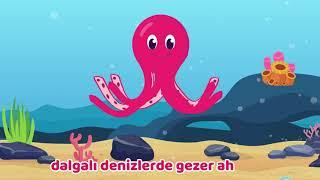 Ahtapot - Demet'in Çocuk Şarkıları - Demet Tekin