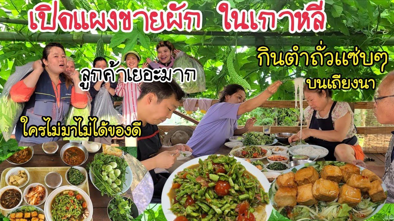 EP.381 |เปิดเเผงขายผักไทยที่เกาหลีใต้ ลูกค้าเยอะมาก กินตำถั่วลูกชิ้นปลาทอด เเซ่บๆบนเถียงนาน้อย