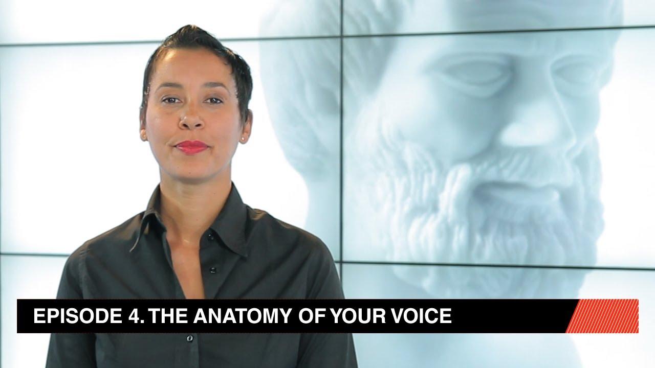 La anatomía de su voz - YouTube
