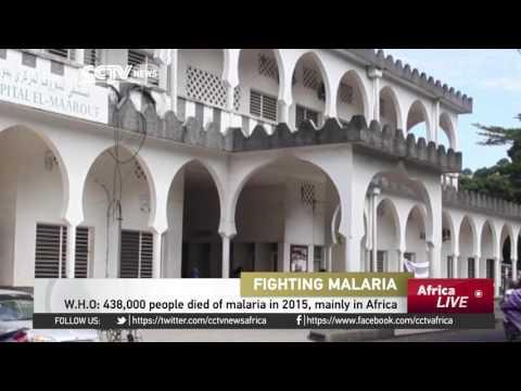 Comoros on the cusp of eradicating malaria