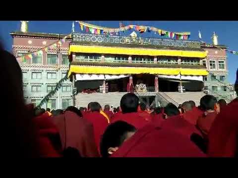 Dis high lama  advice 2018 in Tibet