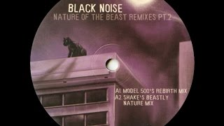 Black Noise - Nature Of The Beast ( Model 500's Rebirth Mix )