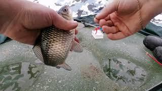 Ловля карася зимой Взял жену на рыбалку Закрываем сезон твердой воды Рыбалка в Запорожье