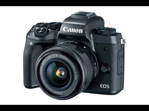 Canon EOS M5 & EOS M System