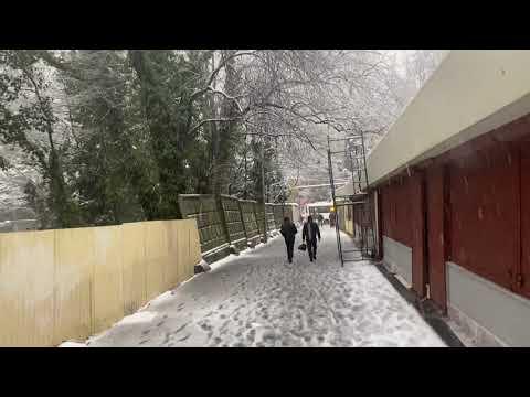 🔴🔴Что случилось в Сочи сегодня 18 февраля. Грянул гром которого не ждали в Сочи. Снегопад в Сочи.