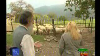 Repeat youtube video Piero Mozzi, Medico Naturopata. 1/3