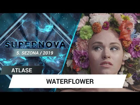 "Waterflower ""Grow"" 