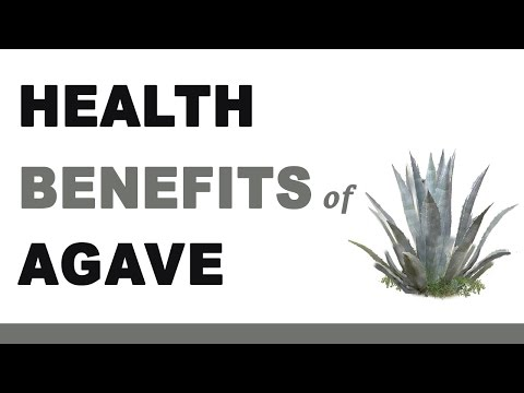 Health Benefits of Agave Nectar