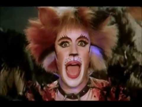 CATS (The Musical).