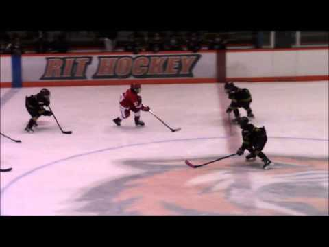 Rochester Red Wings vs Grizzlies Full Game January 17 2015