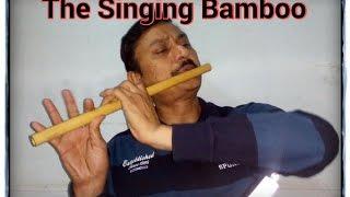 Ajeeb Dastan Hai ye Karaoke ( Lata ) Flute Instrumental by ALOK KULSHRESHTHA