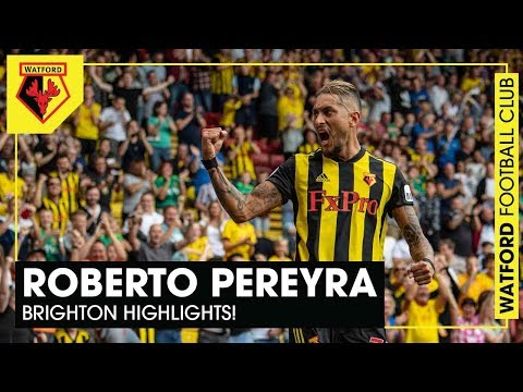 ROBERTO PEREYRA | BRIGHTON HIGHLIGHTS! 👏🏻