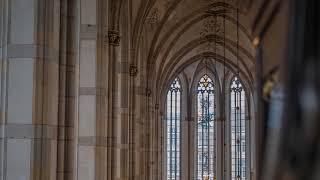 J.S. Bach - 'Jesu, der du meine Seele' (BWV 752)