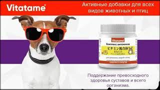 витамины тетравит для животных