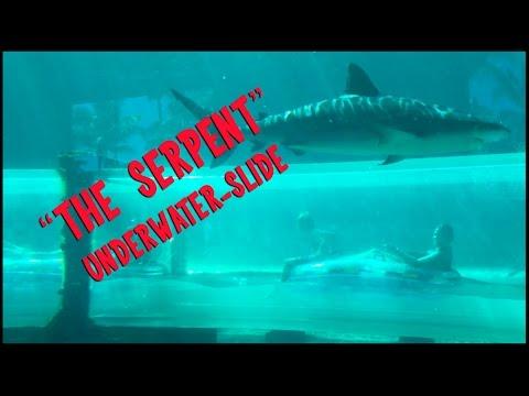 """SERPENT SLIDE"" Underwater Slide at Aquaventure in Nassau, Bahamas"
