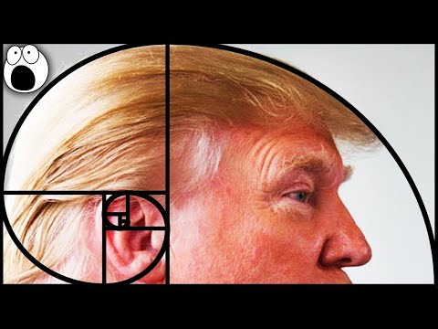 Top 10 Places You Won't Believe The Golden Ratio & Fibonacci