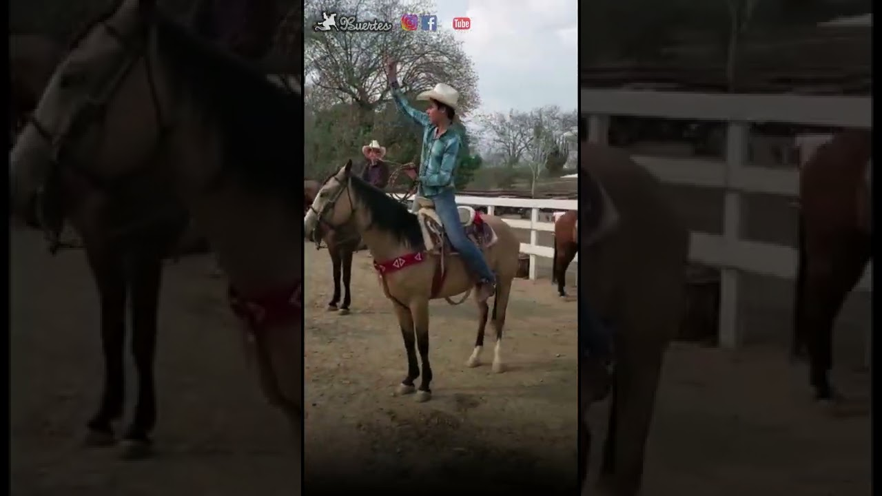 Download Pialadero de Amigos - Tecolotlan, Jalisco - Toño Robles