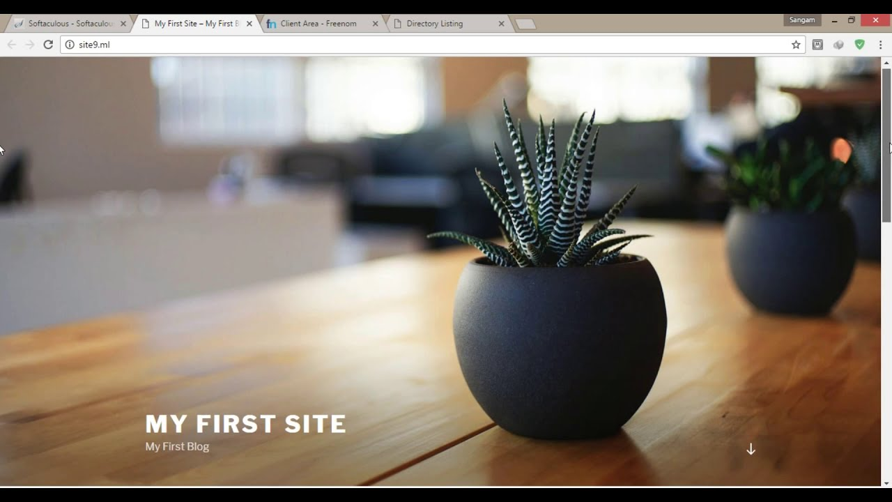 Create a Free Website with Free Domain + Free Hosting and Install WordPress