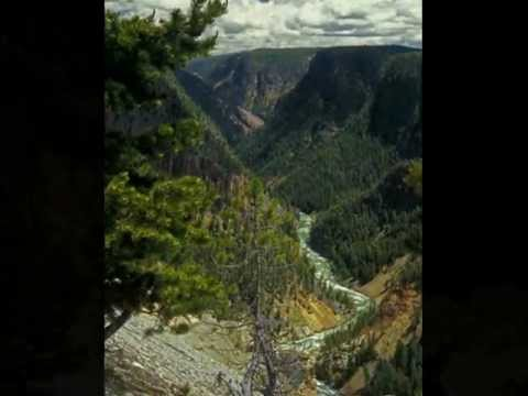 Yellowstone: The story of an ecosystem