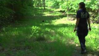 Call Out - Training Exercise For Search Dog
