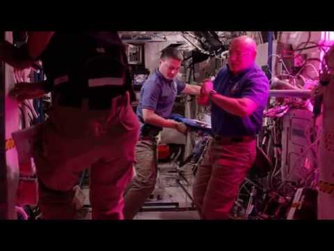Space in 4K - First Lettuce Grown and Eaten in Space