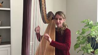 Endless Love by Lionel Richie ~ Tiffany (Envid) Jones - Harpist