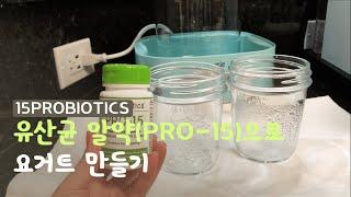 유산균 알약으로 요거트 만들기 | 15종 프로바이오틱스…