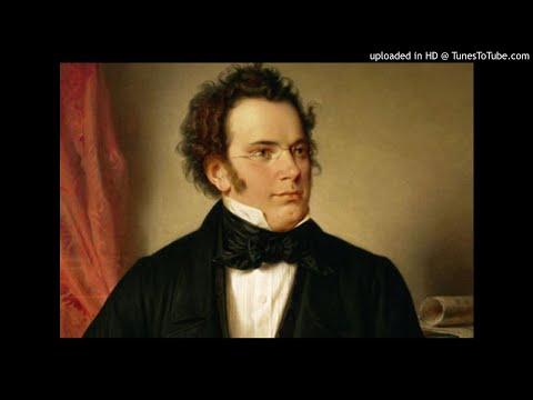Franz Schubert - Schwanengesang, D.957 - XIV. Pigeon Post