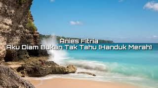 Anies Fitria - Aku Diam Bukan Tak Tahu   Video Lyrical