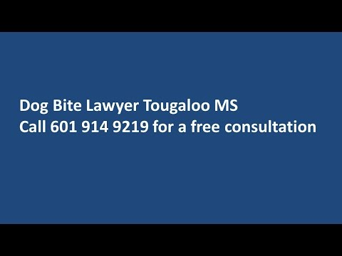 Dog Bite Lawyer Tougaloo MS Call 601 914 9219