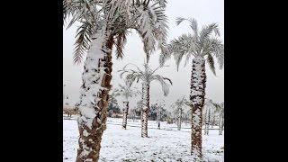 First Ever Recorded Snow in Kuwait & Saudi Arabia Deep Snow/Hail | Mini Ice Age 2015-2035 (127)