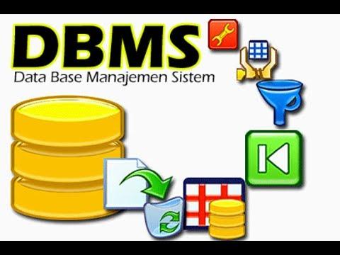Database Language | Database Management System
