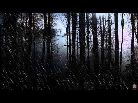 Rybitwa - Modern Deception [Ambient Set]