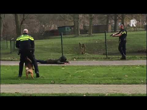 De aanhouding in Spijkenisse. Video: MediaTV