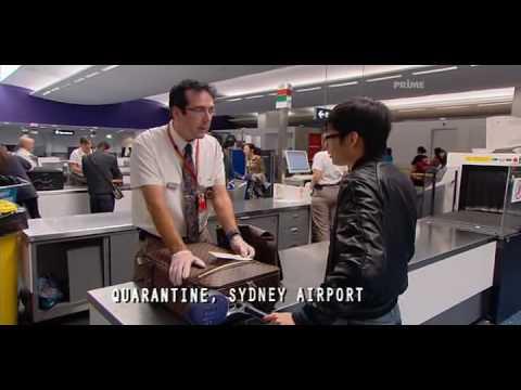 Border Security Australia - Hiding hash in your arse won