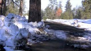 Nature-Winter Scenes 2009