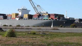 Huge Cargo Ship Comes to San Francisco ( HD )