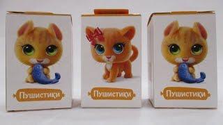 Свитбокс Котята Пушистики / Sweet Box Kittens Fuzzies