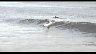 このビデオの情報Surfinf@Rockaway Beach.