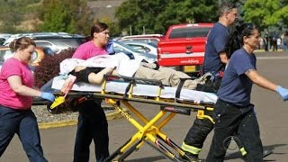 Over a dozen killed in mass shooting