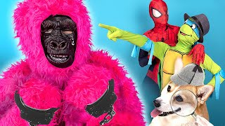 Happy Dog Spiderman and Ninja Turtle Vs Pink Gorilla Thief