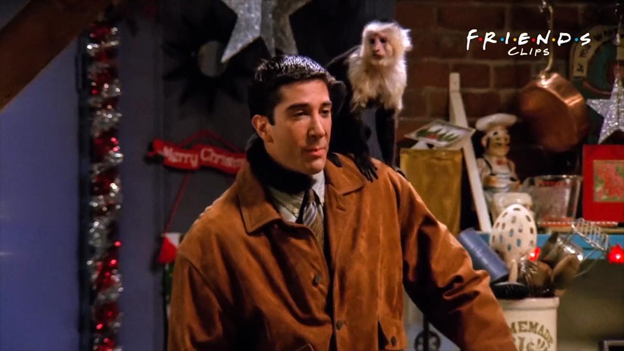 Friends   Ross Gets A Pet Monkey - YouTube