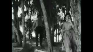 teri pyaari pyaari surat ko..chashm e baddur..Sasural1961 - Rafi - SarojaDevi..a tribute