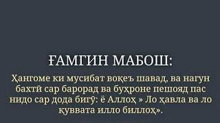 Салом Алайкум