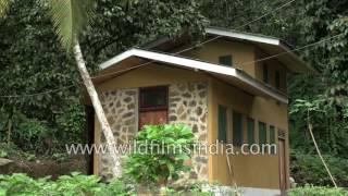 Morawaka Tea Garden Lodge in Sri Lanka