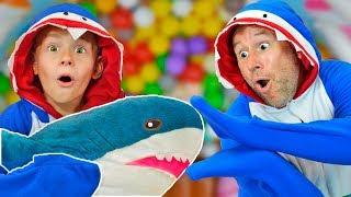 Baby Shark Song   동요와 어린이 노래   어린이 교육 노래