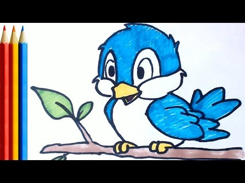 How To Draw A Blue Bird Easy Step By Step Tutorial