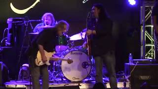Gonna Hurt Like Hell -  Walter Trout Band feat: Alastair Greene  LIVE !!  - musicUcansee