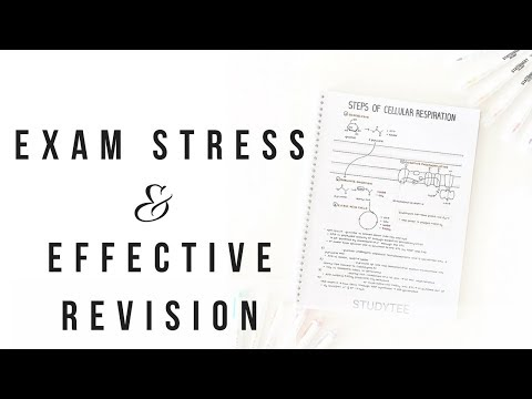 How I Study For Exams - Part 2 | Dealing With Exam Stress & Revising Effectively | Studytee